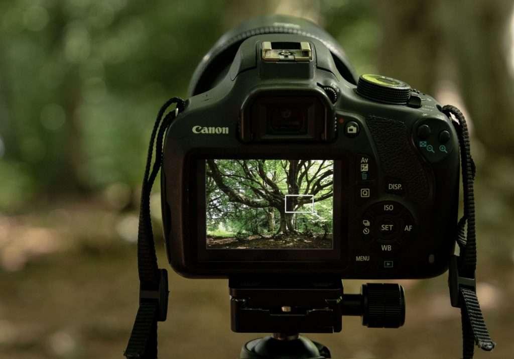 Crea una buona composizione fotografica:la regola dei terzi